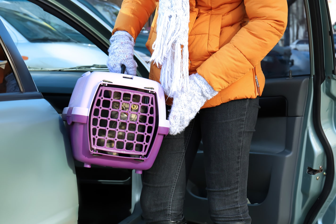 Woman in orange winter coat and mittens holds a purple cat carrier with a cat inside.