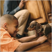 Young boy with spotted brown spotted Dachshund playing on the floor.