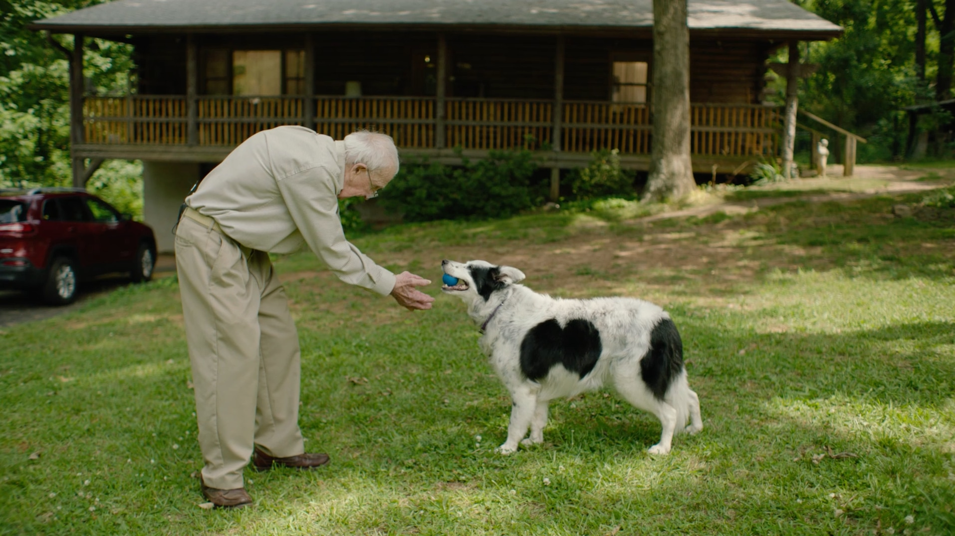 Chaser, a border collie who has learned over 1,000 words, gives a ball to her owner, John Pilley.